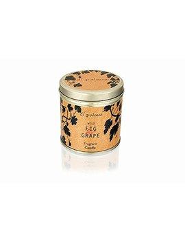 Di Palomo Wild Fig And Grape New Tin Candle 35 Hour Burn by Di Palomo