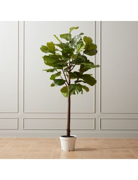 "Faux Potted 84"" Fiddle Leaf Fig by Crate&Barrel"