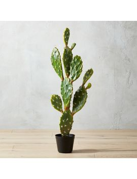 "Potted 39"" Faux Prickly Pear Cactus by Crate&Barrel"