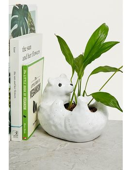 Bear Hug Plant Plot by Urban Outfitters