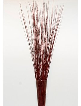 Green Floral Crafts 4 5 Ft Tall Wine Red Asian Willow, Bunch Of 90 100 Tall Sticks & Tall Grass (Vase Not Included) by Green Floral Crafts