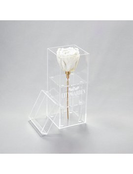 Eternity Rose In White Enclosed In Acrylic Box   Solitaire Bloombox In Viena   Preserved Roses   Infinity Roses by Etsy
