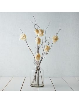 Beech Branch + Hydrangea by West Elm