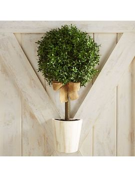 Faux Boxwood Topiary Door Decor & Wreath by Pier1 Imports