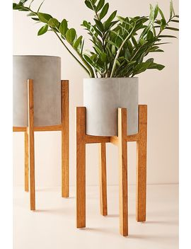 Cement Plant Stand by Anthropologie