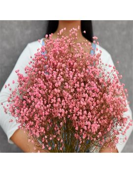 1 Bundle 45 50 Cm  Diy Gypsophila Flower Wedding Party Photo Props Pure Natural Plant Dried Flowers Cafe Library Home Decoration by Ali Express