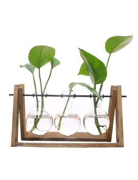Plant Terrarium With Wooden Stand Glass Vase Holder For Home Decoration,Scindapsus Container by Ali Express