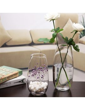 Home Decoration Shop Decorations Transparent Vases New Ash Transparent Classic Glass Vase Flower Vase Hydroponic Bottle by Strongwell
