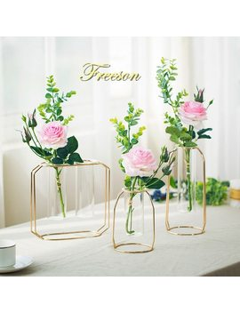 Nordic Glass Cuvette Flower Pot Gold Plated Iron Vase Fashion Plant Pot Garden Planter Modern Flowerpot Plant Stand Decoration by Freeson