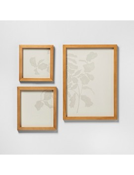 3pk Botanical Wall Art With Brass Frame   Hearth & Hand™ With Magnolia by Shop This Collection