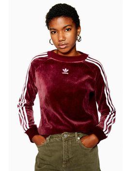 velour-three-stripe-sweatshirt-by-adidas by topshop