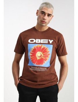 Flower Power   T Shirt Print by Obey Clothing