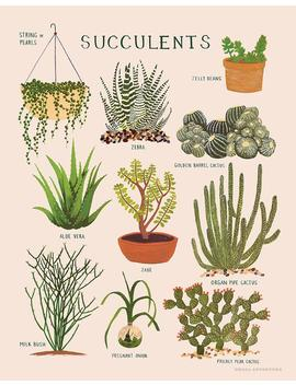 Succulents Print by Etsy