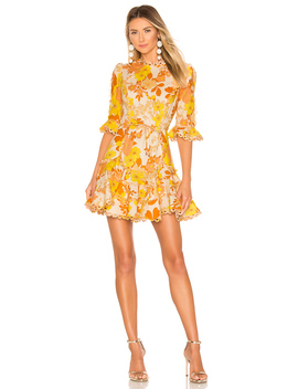 Primrose Flutter Dress by Zimmermann