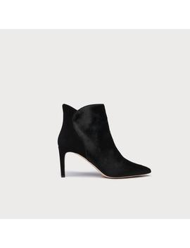 Maja Black Calfhair Ankle Boots by L.K.Bennett
