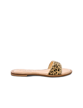 Cannucce Sandal by Co Rnetti