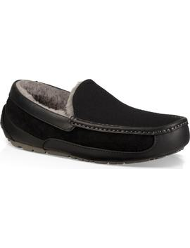 Ascot Slipper by Ugg®