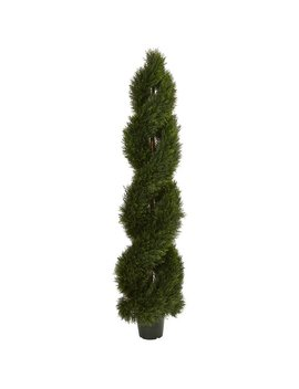 Astoria Grand Double Pond Cypress Spiral Cedar Topiary by Astoria Grand