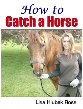 How To Catch A Horse by Lisa Hlubek Ross