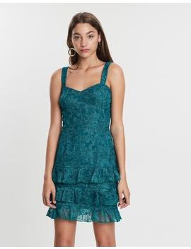 Palm Lace Mini Dress by Cooper St
