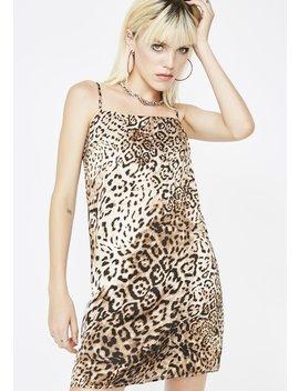 Feline Frisky Leopard Dress by Re Named