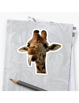 Giraffe With Cute Tongue! by Miamulin57
