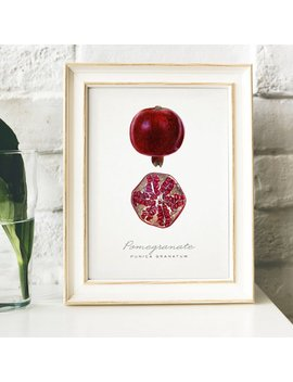 Pomegranate Print, Vintage Kitchen Poster Wall Art Decor, Pomegranates Drawing Gift For Mom Kitchen , Vintage Kitchen Art Kitchen Art | B24 by Etsy