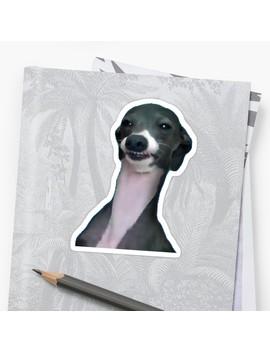 Wyd Dog Um by Rad Merch