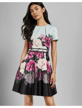 Magnificent Skater Dress by Ted Baker