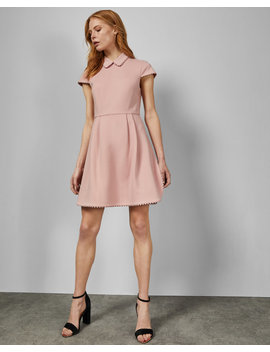 Scallop Detail Collared Dress by Ted Baker