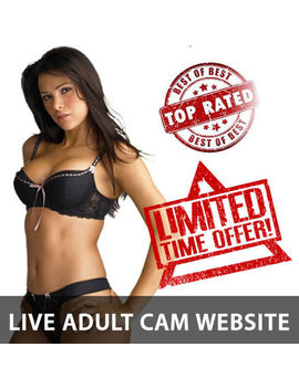 Rare Full Functional Live Camgirl Website Business 4 Sale   Hundreds Of Models! by Ebay Seller