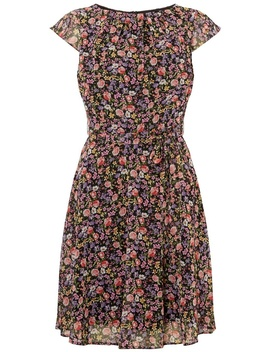 **Billie & Blossom Multi Coloured Chiffon Skater Dress by Dorothy Perkins