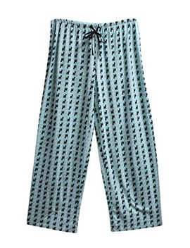 Hue Chihuahua Print Pajama Pants, Aruba Blue, Medium by Hue