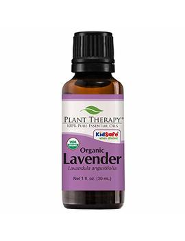 Plant Therapy Lavender Organic Essential Oil | 100 Percents Pure, Usda Certified Organic, Undiluted, Natural Aromatherapy, Therapeutic Grade | 30 Milliliter (1 Ounce) by Plant Therapy