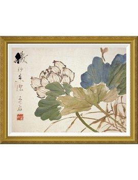 Global Gallery 'lotus' By Xu Gu Framed Wall Art by Global Gallery