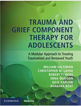 Trauma And Grief Component Therapy For Adolescents: A Modular Approach To Treating Traumatized And Bereaved Youth by Amazon