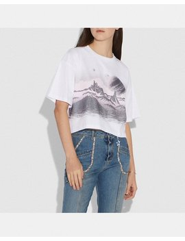 Landscape T Shirt by Coach