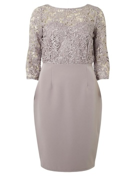 **Showcase Mink 'darcy' Lace Bodycon Dress by Dorothy Perkins