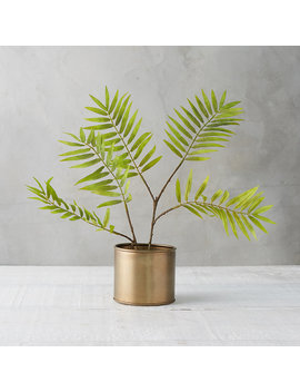 Faux Parlor Palm by Terrain