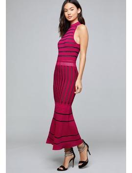 Casi Pointelle Midi Dress by Bebe
