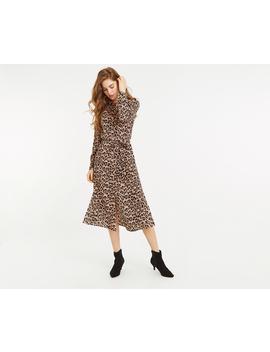 Animal Midi Shirt Dress by Oasis