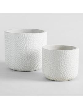 White Embossed Cement Mariela Outdoor Planter by World Market