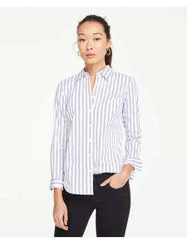 petite-striped-perfect-shirt by ann-taylor