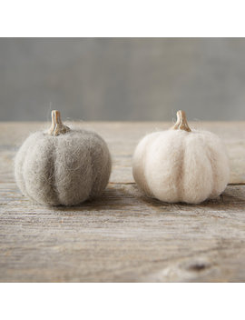 Gray Felt Pumpkins, Set Of 2 by Terrain
