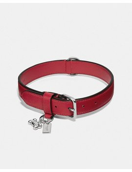 Large Pet Collar by Coach