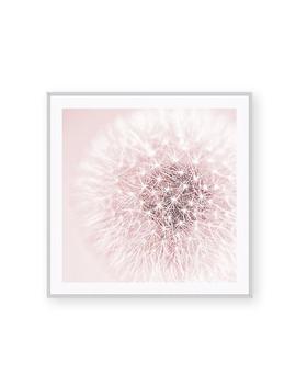 Blush Pink Art Decor, Shabby Chic Bathroom, Gift For Her, Woman, Framed, Dandelion Wall Art, Bedroom, Teen Girl, Spa ~ Galeria Rodrigo by Etsy