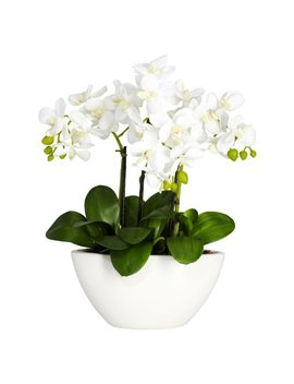 Nearly Natural 4804 Phalaenopsis Silk Flower Arrangement, White by Nearly Natural