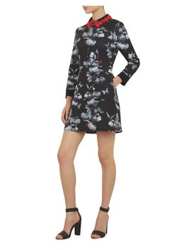 Narrnia Collar Dress by Ted Baker