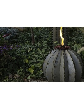 Desert Steel Large Golden Barrel Cactus With Torch by Generic