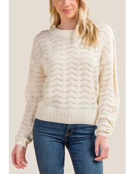 Paxton Pointelle Sweater by Francesca's